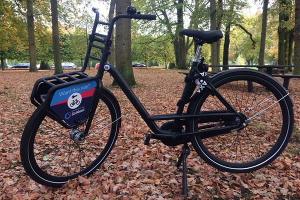 Go About Bike De Wetering Haarrijn